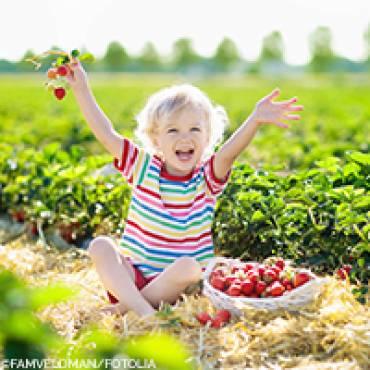 Rote Vitamingranaten: Sommerzeit – Erdbeerzeit!