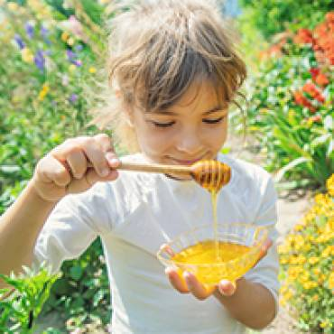Flüssiges Gold für die Gesundheit: Heilsamer Honig