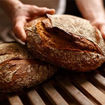 Gesund oder nicht? Das tägliche Brot
