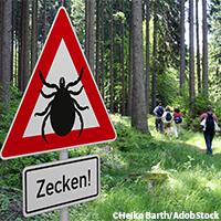 Es geht wieder los: Zecken – Fünf neue FSME-Risikogebiete in Deutschland